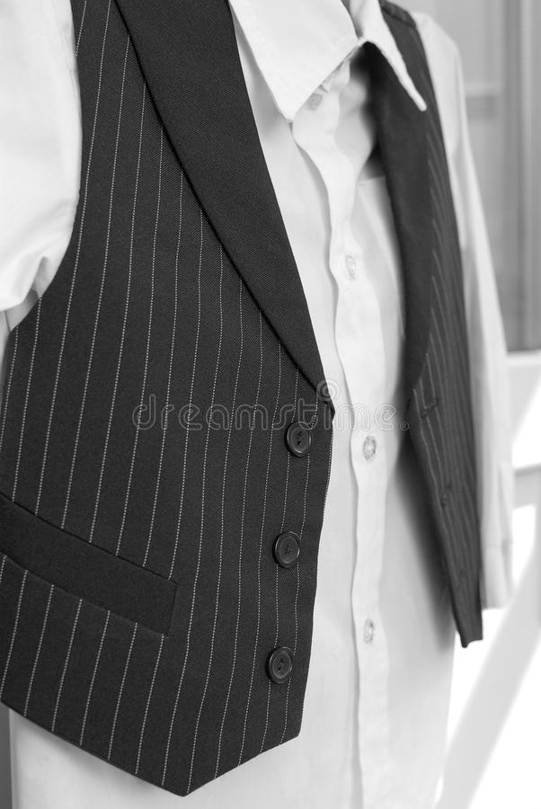 Download Shirt and vest stock image. Image of jacket, businessman - 14249267