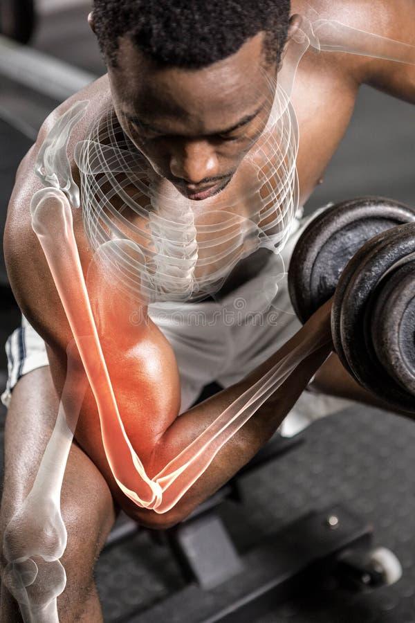 Shirtless idrottsman nen som gör övning med hantlar arkivfoto