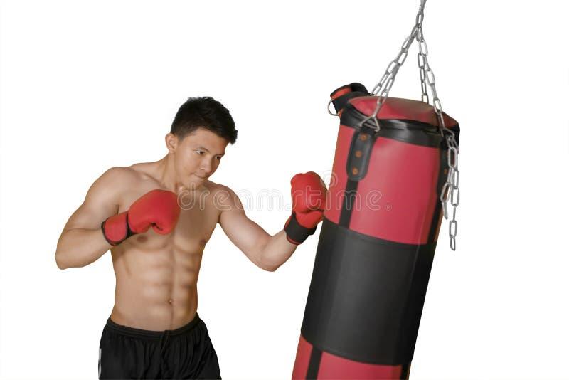 Shirtless man som slår på en boxas påse royaltyfri bild
