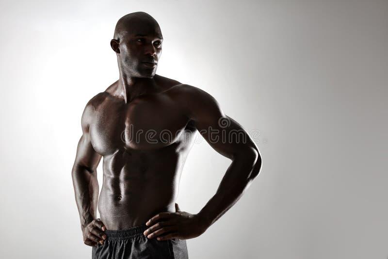 Shirtless manlig modell som poserar mot grå bakgrund royaltyfri bild