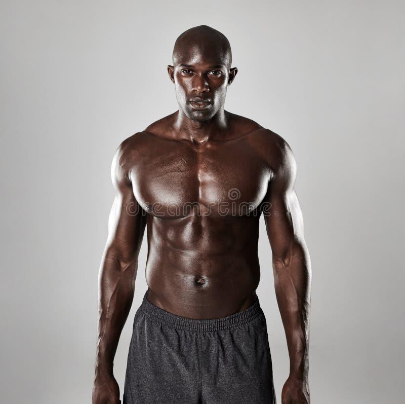 Shirtless manlig modell som säkert står arkivfoton