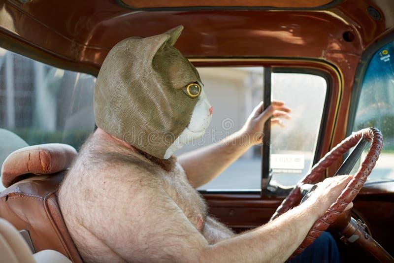Shirtless mens die bizar kattenmasker dragen terwijl het drijven stock foto's