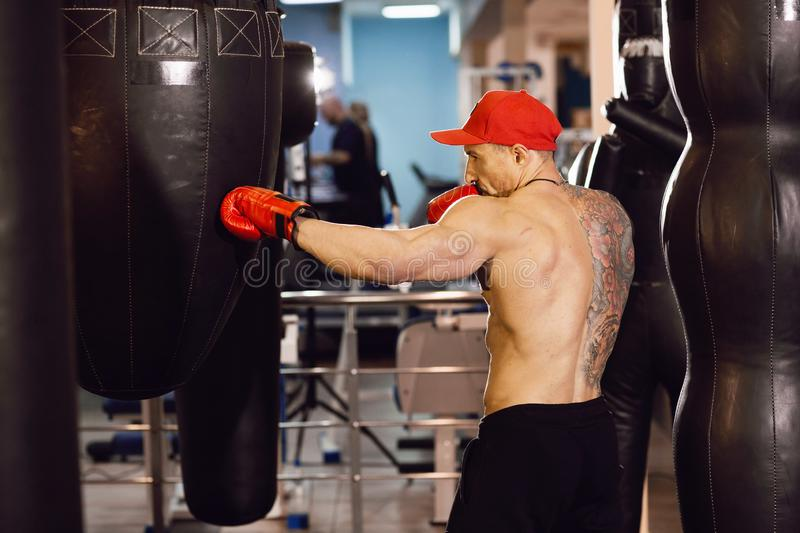 Shirtless muscular boxer with punching bag in gym. A man with a tattoo in red boxing gloves stock photography