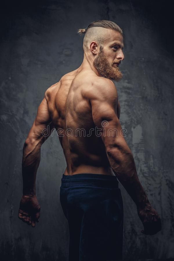 Shirtless muscular man with beard from his back. Shirtless muscular man with beard from his back over grey background royalty free stock images