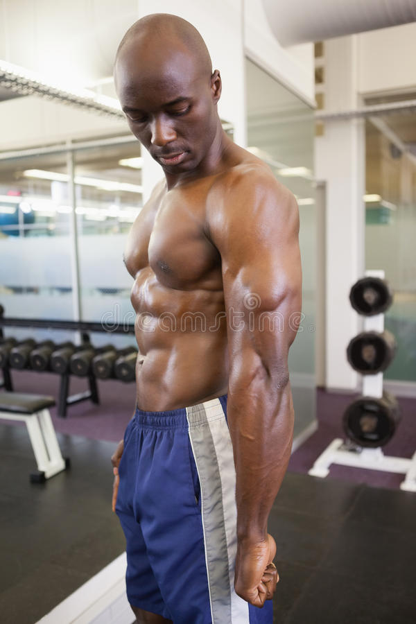Shirtless muscular man in gym. Side view of a shirtless muscular man posing in gym stock photos