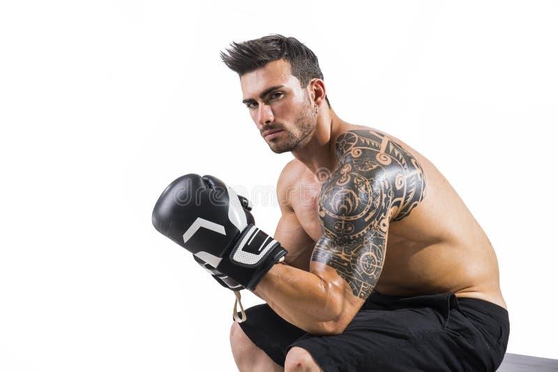 Shirtless och muskulös man med handskar för boxare` s royaltyfria foton