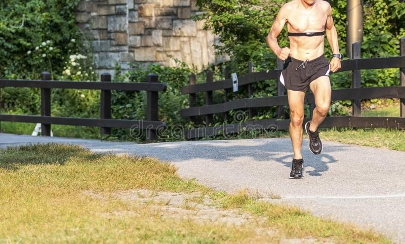 Shirtless runner wearing heart rate monitor on trail in park stock photos