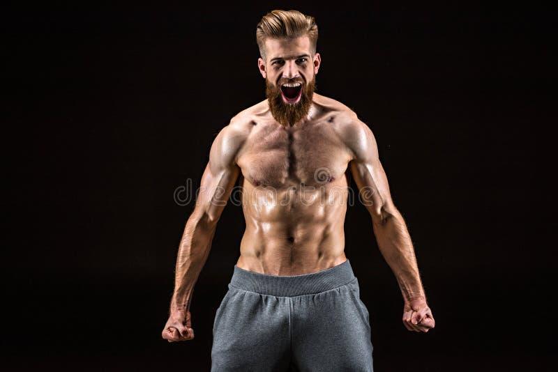 Shirtless skäggig kroppsbyggare som poserar och skriker som isoleras på svart royaltyfri fotografi
