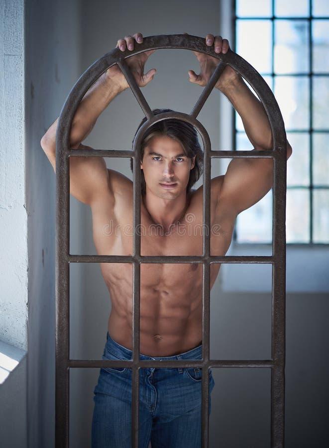 Shirtless stilig man med en perfekt benägenhet för muskulös kropp på en järnfönsterram i studion som ser en kamera arkivbilder