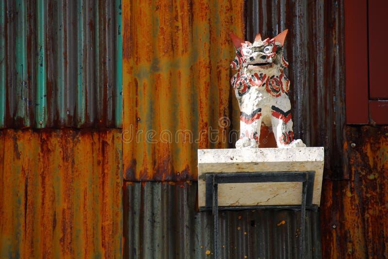 Shisa lejonhund framme av väggen arkivbilder