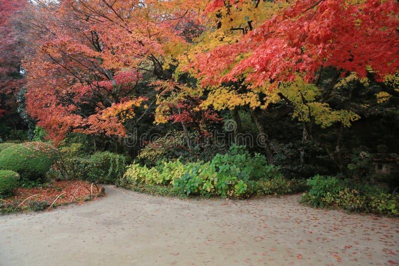 Shisen-tuinieren van dalingsseizoen stock fotografie