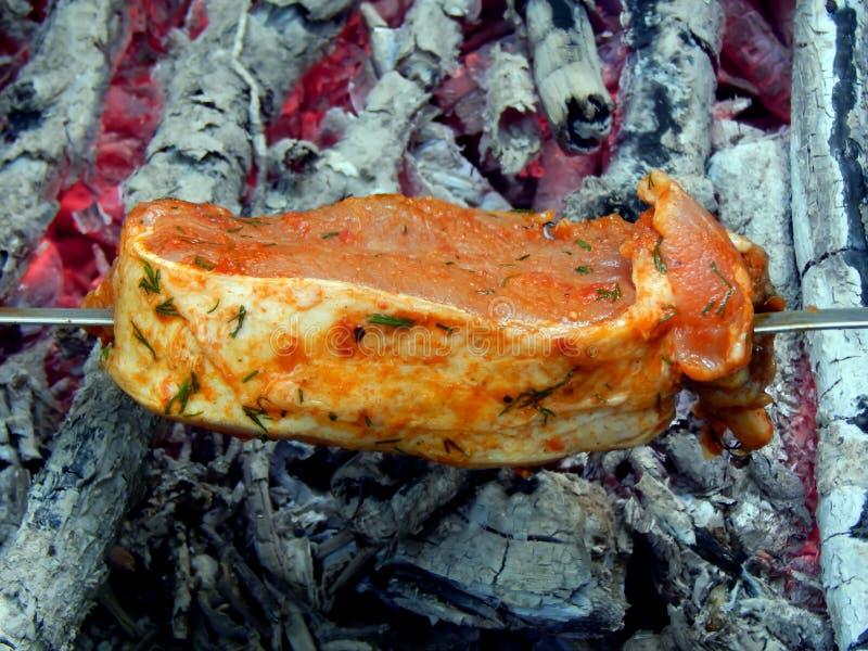 Shish kebab από το χοιρινό κρέας στους κόκκινους άνθρακες στοκ εικόνες