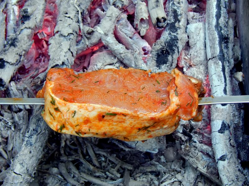 Shish kebab από το χοιρινό κρέας στους κόκκινους άνθρακες στοκ εικόνα