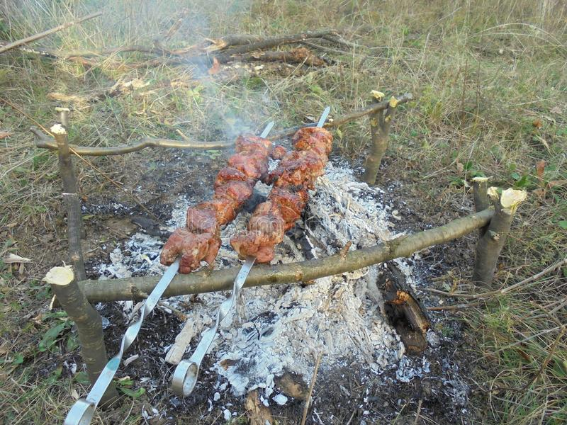 Shish kebab on skewers that is fried on a fire on the ground stock photos