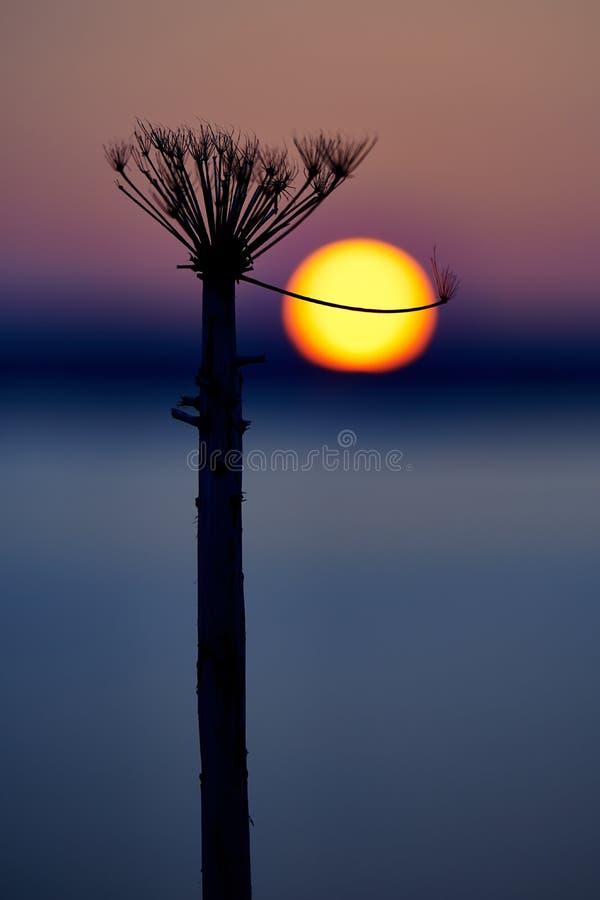 Shishiudo Sunset royalty free stock photography