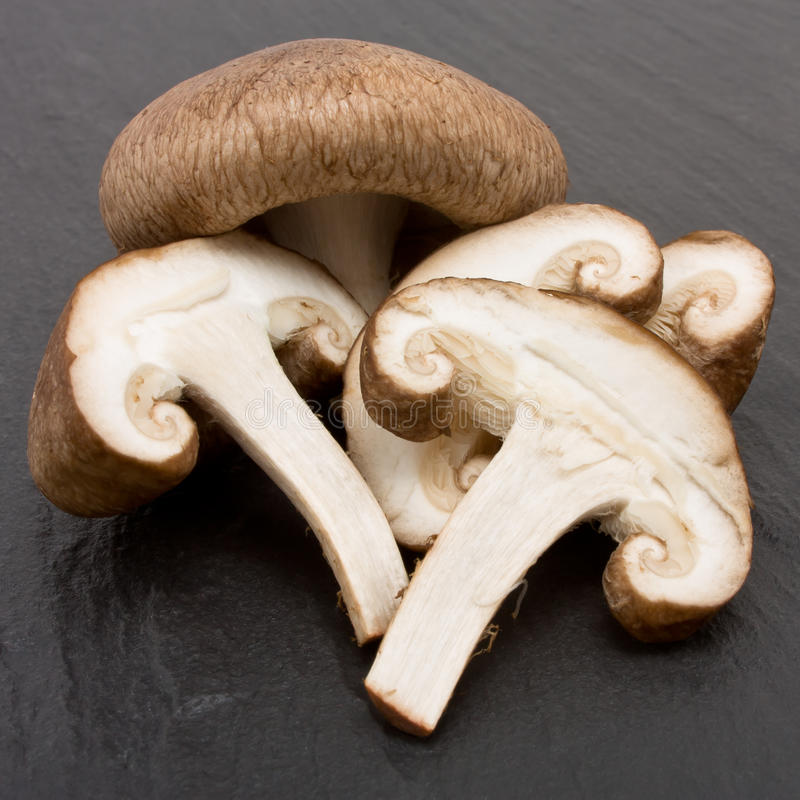 Shitake Mushrooms. Whole and sliced raw Shitake Mushrooms against dark slate background stock photos