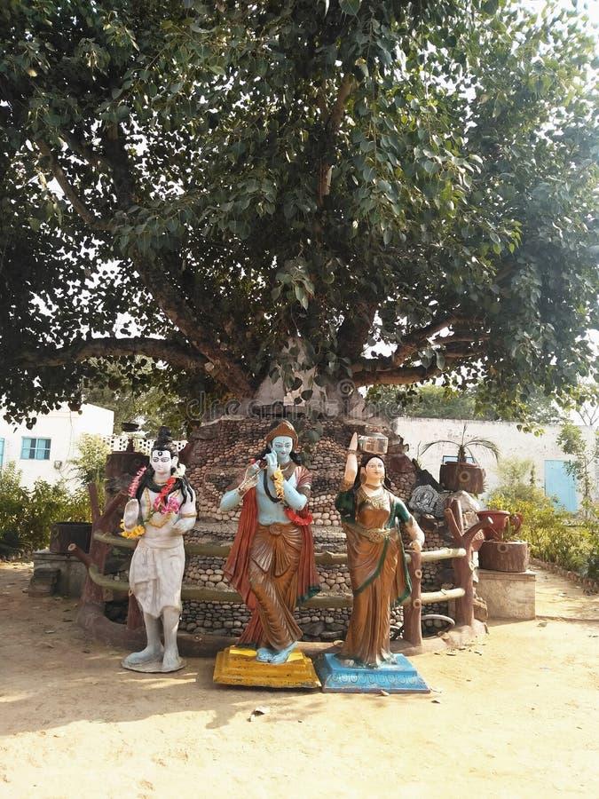 Shiva Λόρδου με το krishna radhe στοκ εικόνες με δικαίωμα ελεύθερης χρήσης