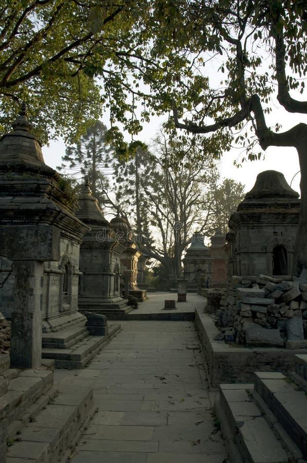 Shiva-Schongebiet stockbilder