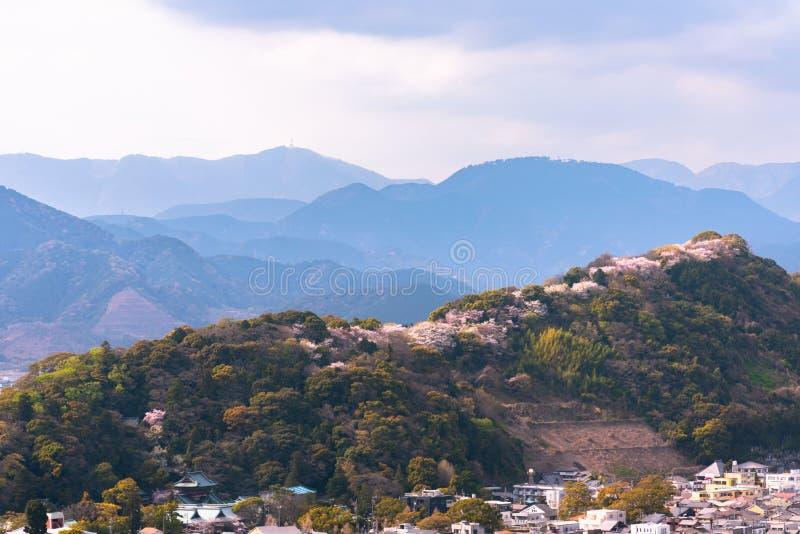 Shizuoka stadshorisont under körsbärsröda blomningar (den Sunpu slotten parkerar), royaltyfria bilder