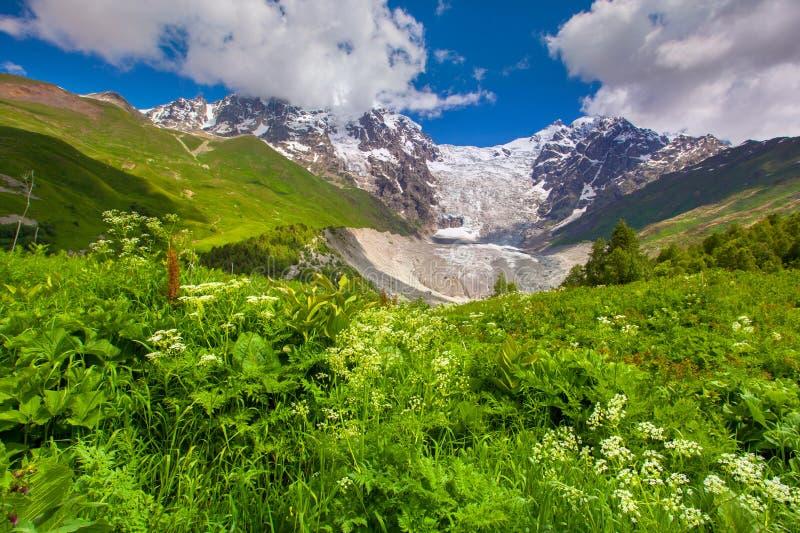 Shkhara och Tetnuld berg. fotografering för bildbyråer