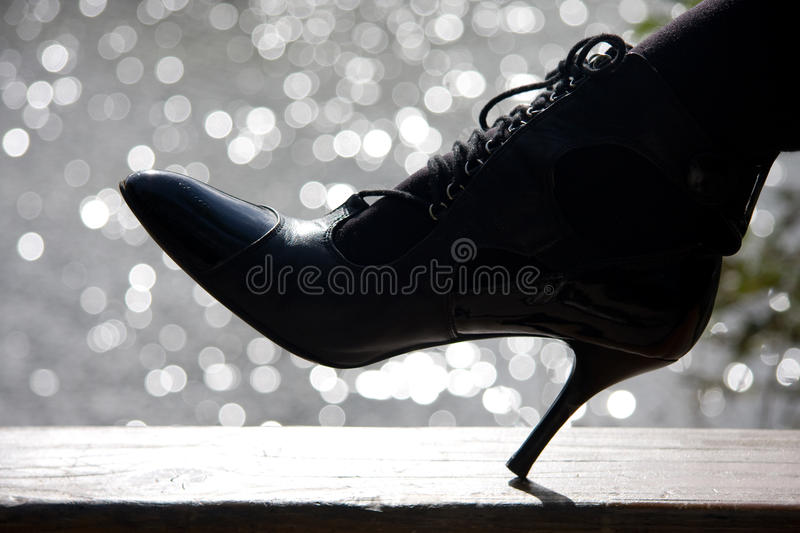 The shoe royalty free stock images
