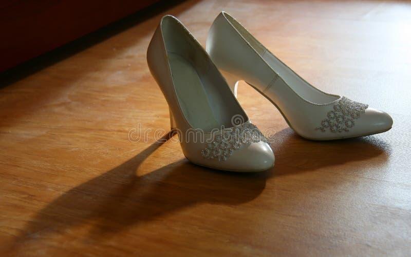 Download Shoe stock image. Image of shoe, elegant, pair, seductive - 26139493