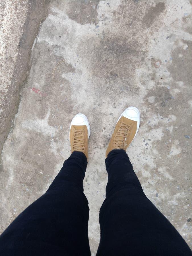 Shoe converse stock photos