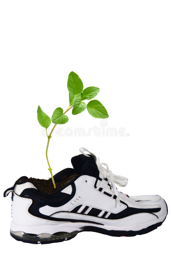 Shoe growth royalty free stock image