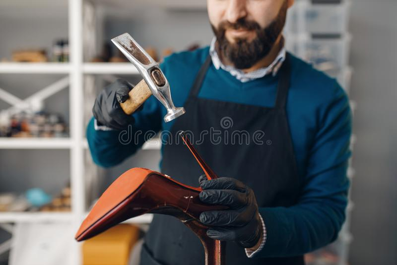 Shoemaker with hammer nails tips to the shoe. Shoemaker with hammer nails the tips to the shoe, footwear repair service. Craftsman skill, shoemaking workshop stock image