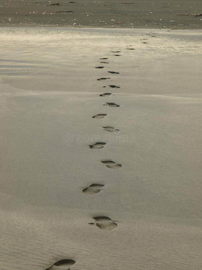 Free Shoeprint On The Black Sand Beach Royalty Free Stock Photo - 24729795