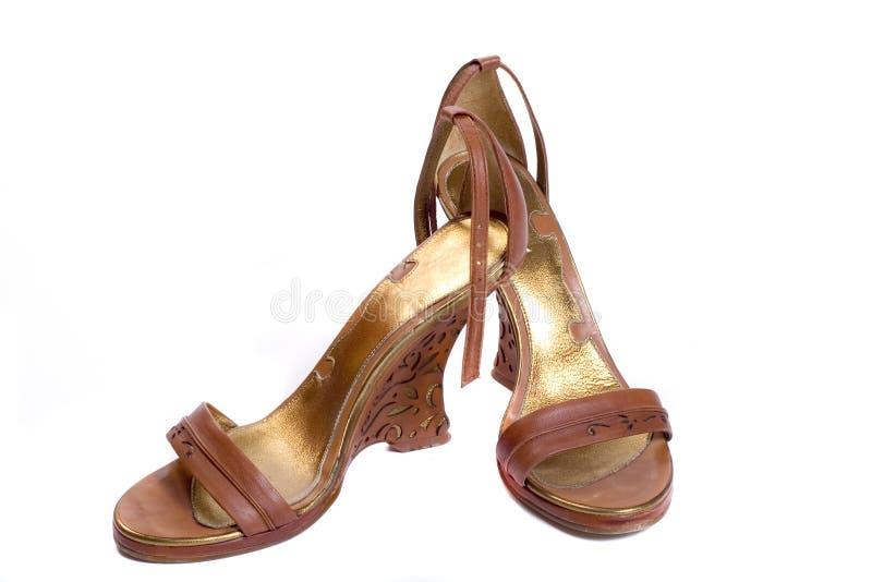 shoes den stilfulla kvinnan royaltyfri fotografi