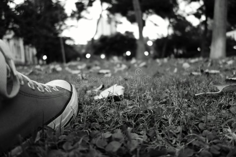 Shoes in the grass royalty free stock photography