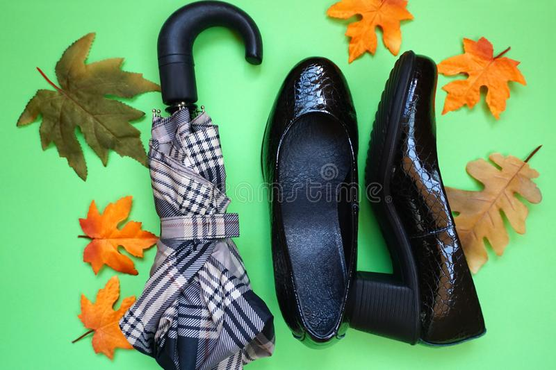 Shoes for rain, umbrella and autumn leaves on a green background. Autumn coming concept. Shoes for rain, umbrella and autumn leaves flat lay on a green stock photo
