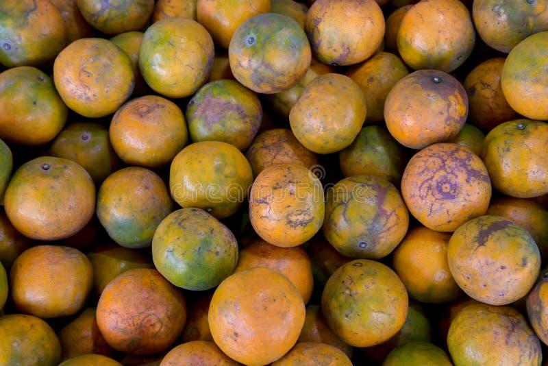 Shogun oranges. The skin slim soft sour flavors are good. Fresh oranges at a local farmers market . stock photo