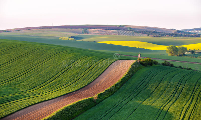 Shooting box on spring green fields of Czech Moravia. Hunting lodge on spring green fields of Czech Moravia. Shooting box on Green and yellow spring arable stock images