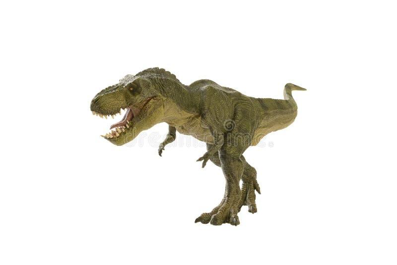 Dinosaur. Shooting dinosaur on white background stock photography