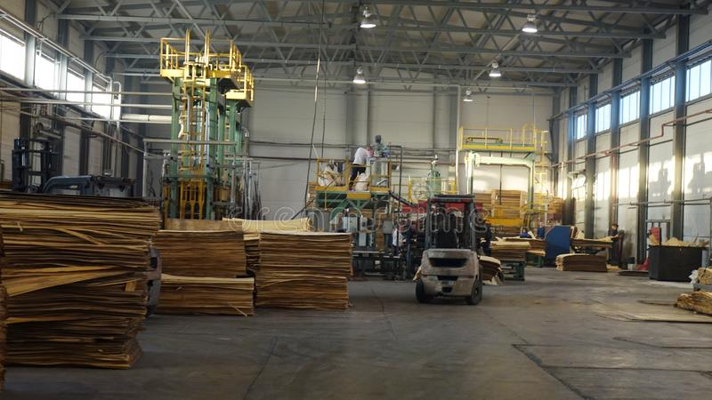 Shop for the production of plywood. Processing of business wood. Woodworking industry. Shop for the production of plywood. Processing of business wood stock photo