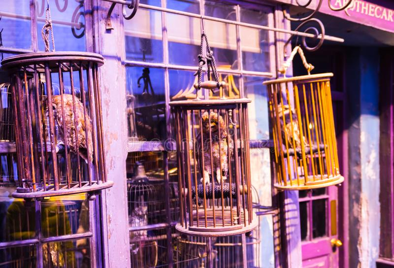 Shopfensteranzeige mit magischen Gegenständen in Diagon-Gasse von Harry Potter-Film Warner Brothers Studio Großbritannien lizenzfreies stockfoto