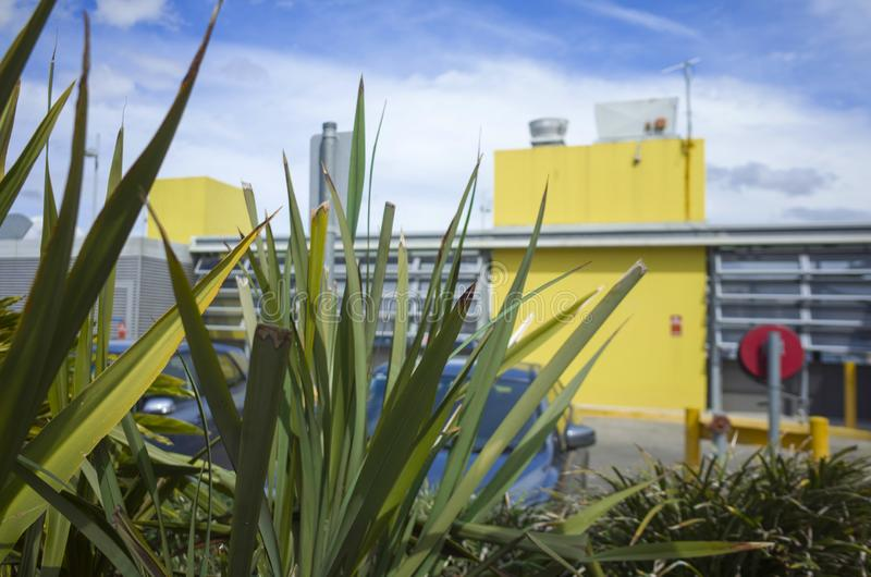 Shopping center roof area parking with decorative plants. Parked cars, traffic signs and yellow buildings against a blue sky with clouds royalty free stock photography