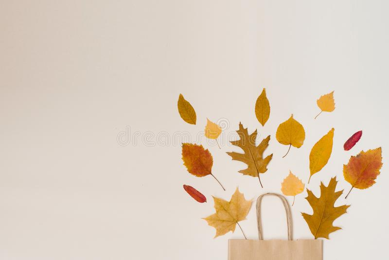 Shopping crafting paper bag with fallen leaves peeking out of it, isolated on beige background royalty free stock photo