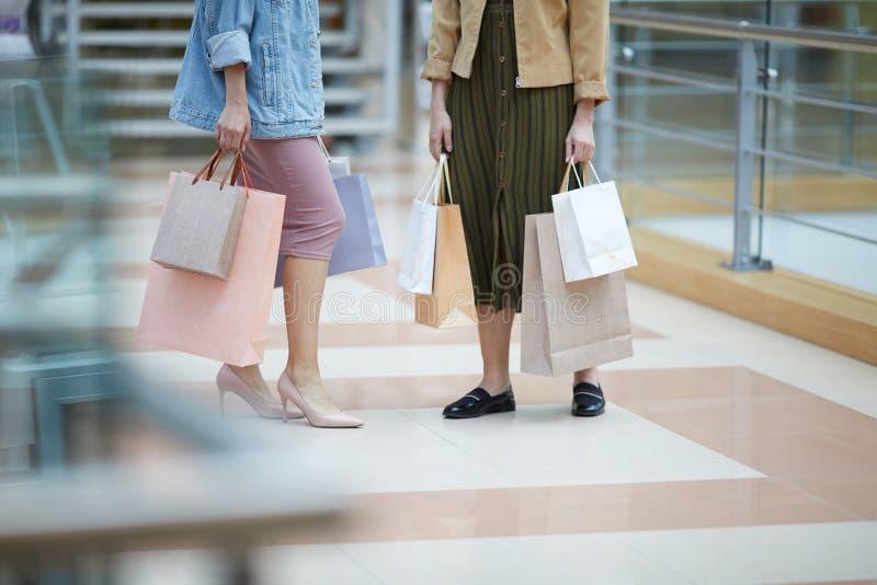 Shopping med stylisten royaltyfri fotografi