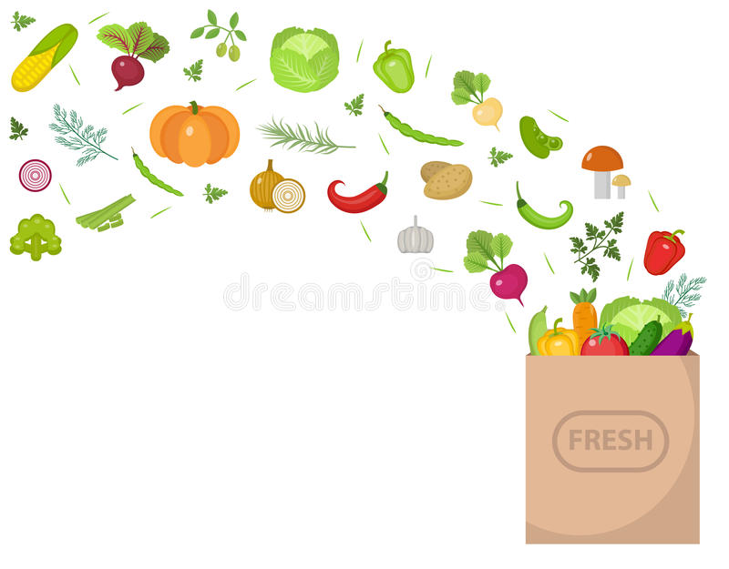 Shopping paper bag with fresh vegetables. Flat design. Banner space for text, isolated on white background. Healthy vector illustration