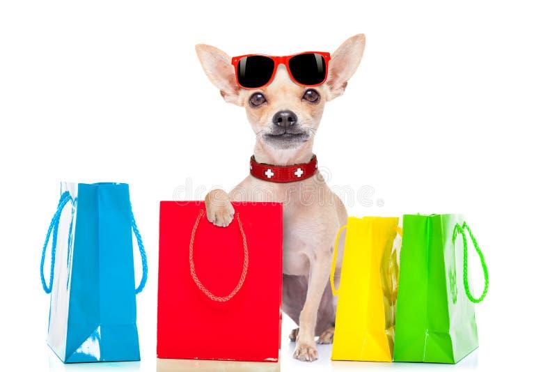 Shoppinghund royaltyfri bild
