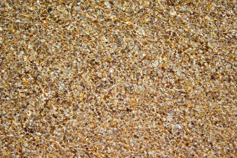 Shore beach water sea wave sand shells, background texture. Shore beach water sea wave sand shells, vacation background texture royalty free stock photo