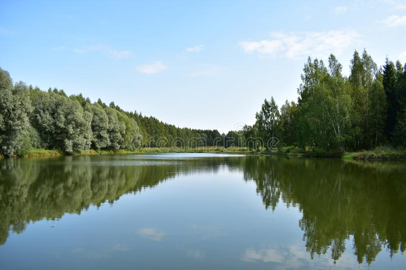 The shore of the forest lake is beautiful and calm, the mirror surface of the lake reflects the trees surrounding the pond. And the sky, making the lake seems stock photo
