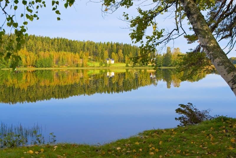 The shore of lake - 2