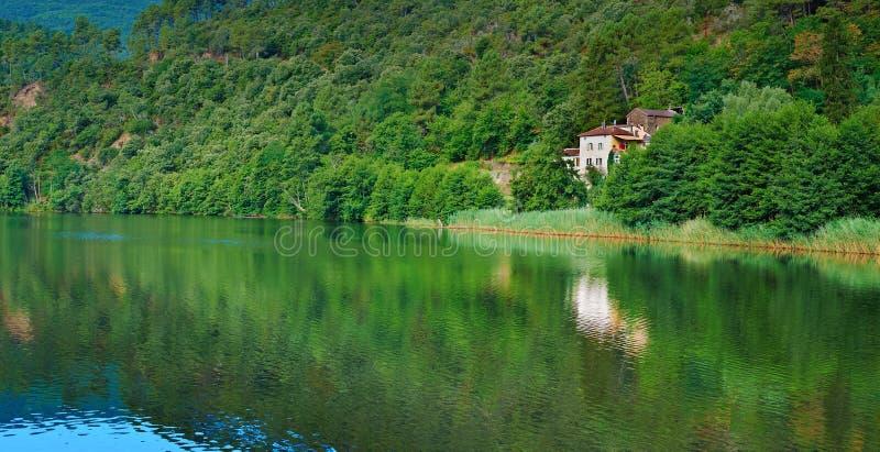 Download Shore of Lake stock photo. Image of france, morning, ecology - 20753482