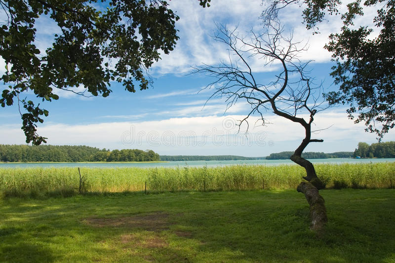Download Shore of the lake stock photo. Image of holiday, scene - 26186070