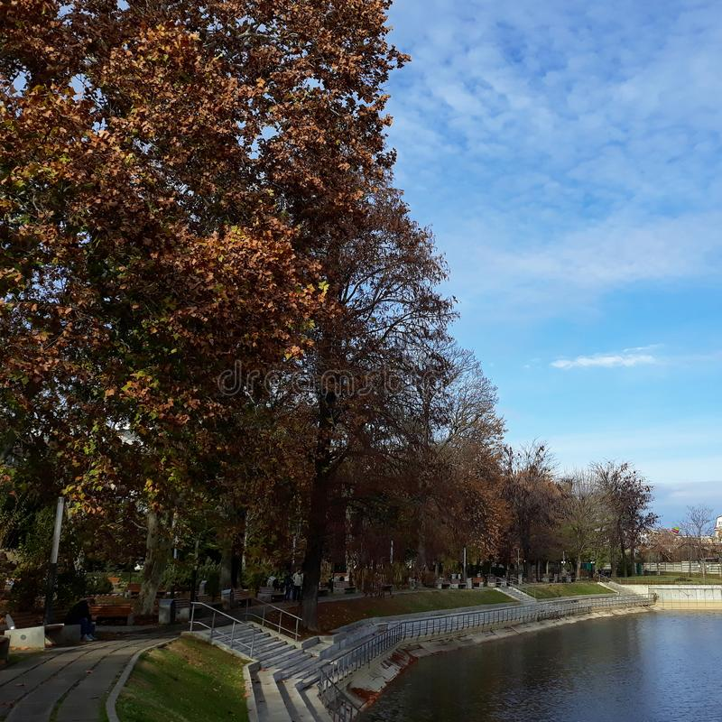 The shore of the lake in Arad city - Romania. In a sunny autumn morning royalty free stock images