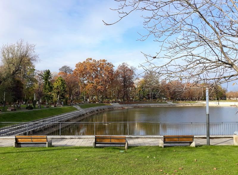 The shore of the lake in Arad city - Romania. In a sunny autumn morning royalty free stock photos
